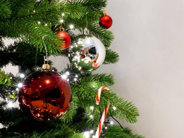 Eventi di Natale a Ravenna Foto