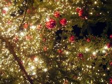 Presepi di Natale a Milano Marittima Foto